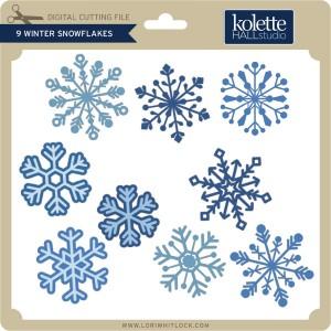KH-9-Winter-Snowflakes