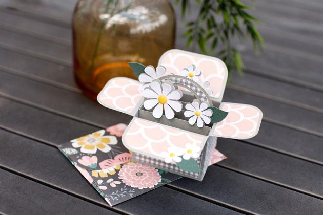 Cricut Birthday Cards Free ~ Cricut all occasion box card cartridge lori whitlock