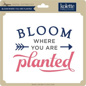 KH-Bloom-Where-You-Are-Planted