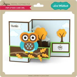 LW-Pop-Up-Box-Card-Owl