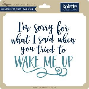 KH-I'm-Sorry-For-What-I-Said-Wake
