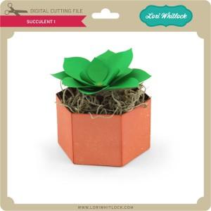 LW-Succulent-1