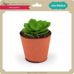 LW-Succulent-4