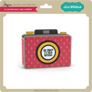 LW-A2-Shaped-Box-Card-Camera