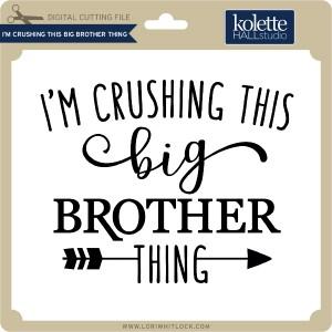 KH-I'm-Crushing-this-Big-Brother-Thing